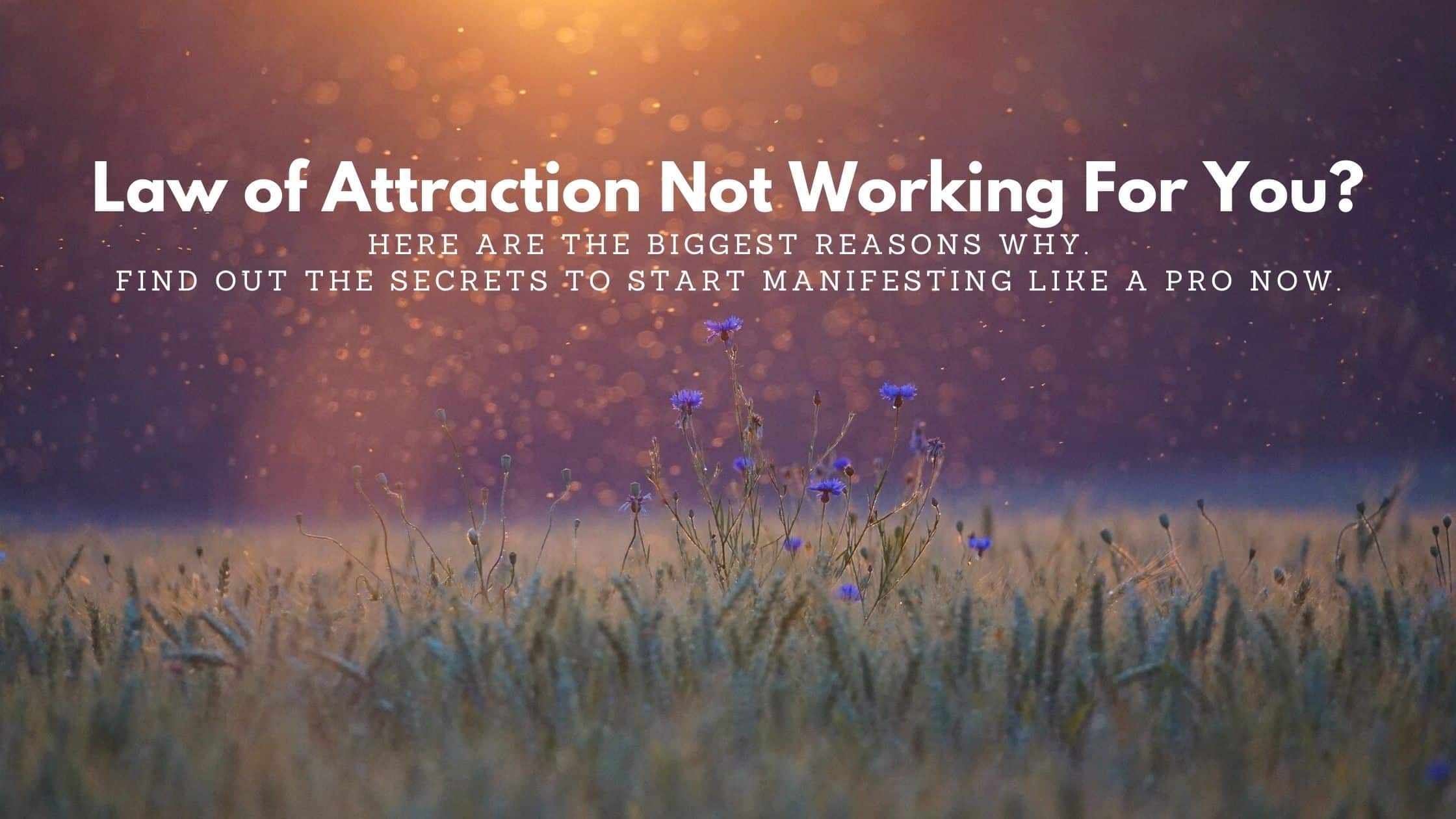 law of attraction not working for you? Find out why here.